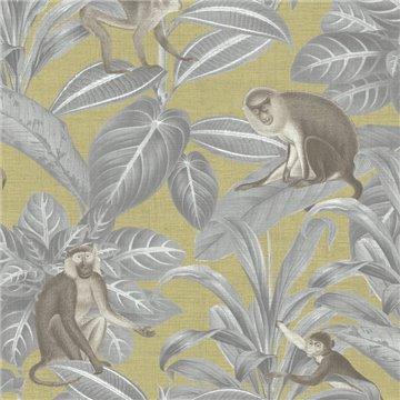 Indian Monkey Emperor Yellow DYW0008