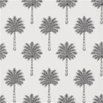 FP755001 Les palmiers Noir Blanc