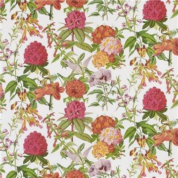 FP757001 Les rosages Rouge