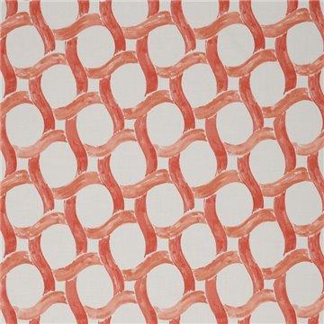 Lepidotteri Coral N9012271004