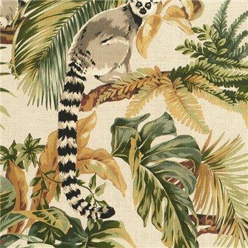 Lemuri 6501