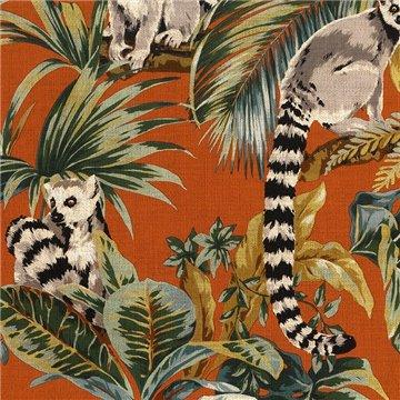 Lemuri 6503