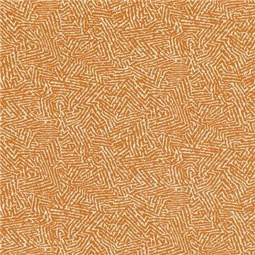 Kaiko Pumpkin 7789-06