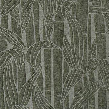 Bambusa Thyme 43010