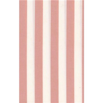 PICCADILLY STRIPES PINK