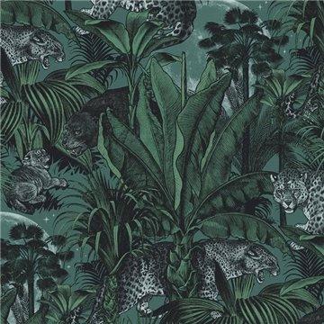 Jungle Faunacation DVS066