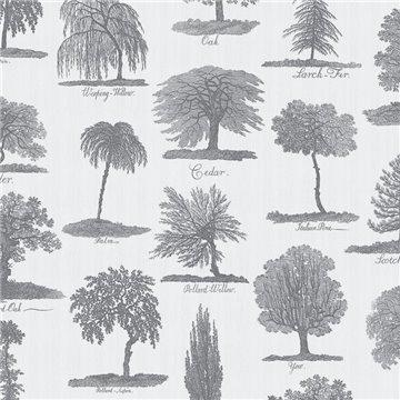 Arboreta Charcoal DVS050