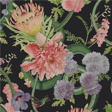 Forbidden Bloom Black DVS030