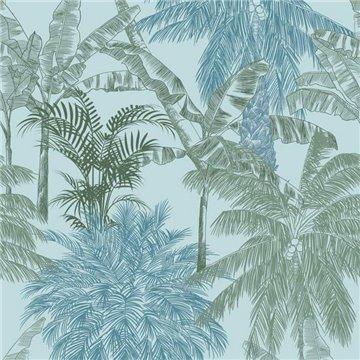 Palms Caqui 9900011