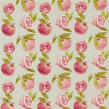 Agrias Grapefruit F1506-01
