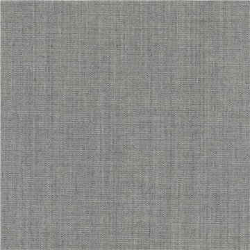 Canvas 2 C0124