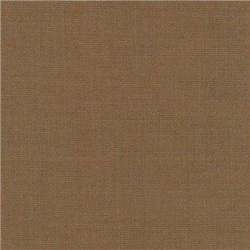Canvas 2 C0254