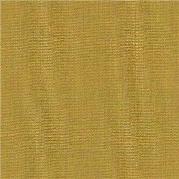 Canvas 2 C0446