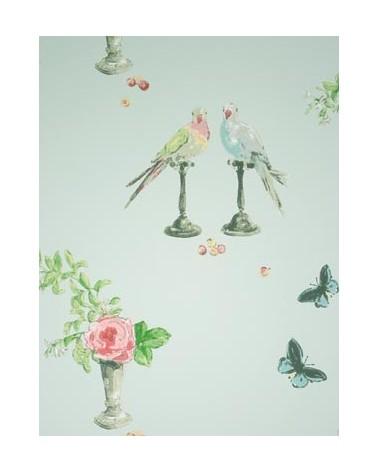 perroquet_NCW3830-01
