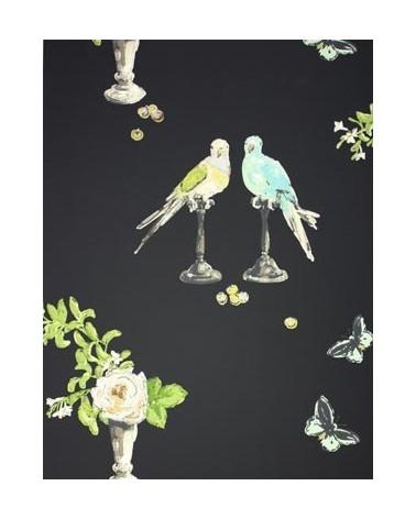 perroquet_NCW3830-04