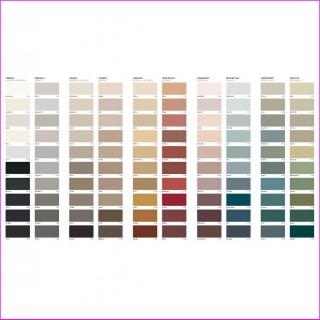 Todos los colores ( Paleta 100 )